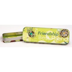 DIY Friendship Pencil Box by Jolene