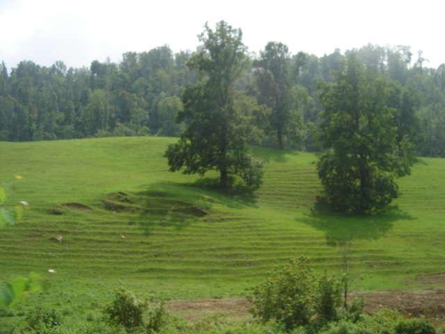 Beautiful Kentucky 2