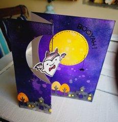 """""""BOOYAH!""""Z-FOLDED SPINNER CARD"""