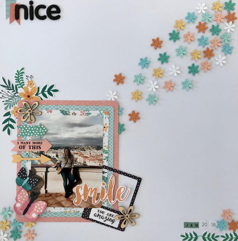 Nice Jan 2018