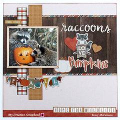 Raccoons Love Pumpkins
