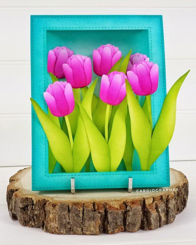 Magenta Tulips for Mom