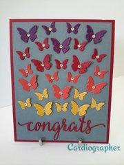 Congrats - butterflies