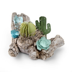 Driftwood and 3D Succulent Display