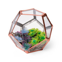 Shrinky Plastic 3D Succulents