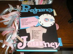 Pregnancy Journal--Cover