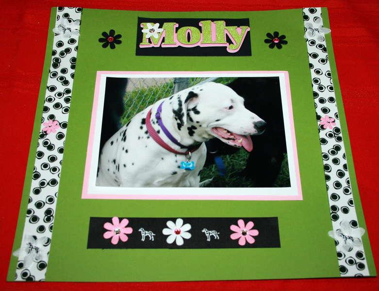 Molly ( Dalmation)