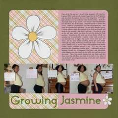 Growing Jaz