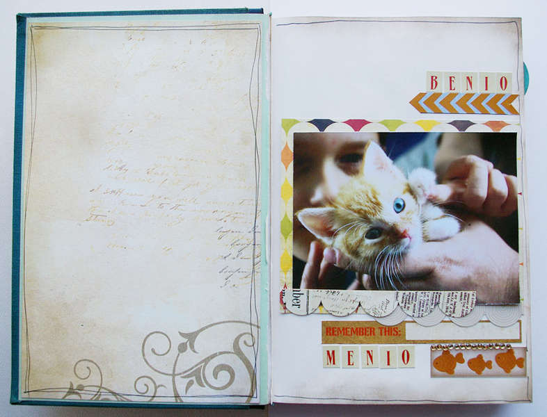 History of my cat - altered book