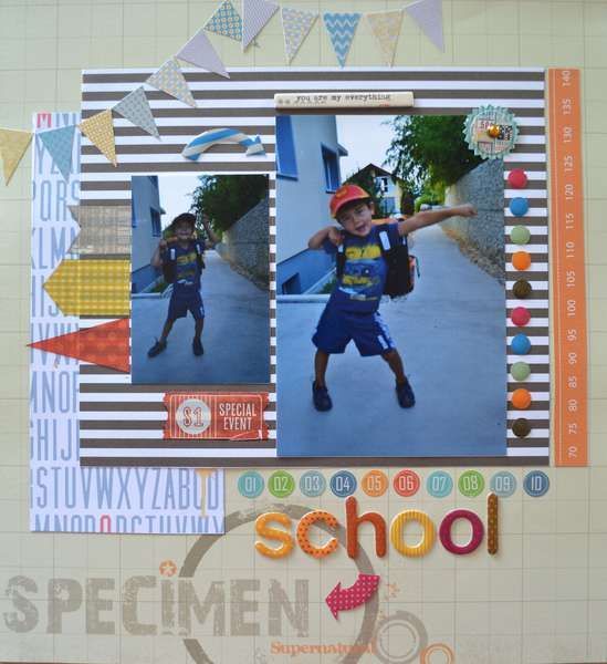 School specimen