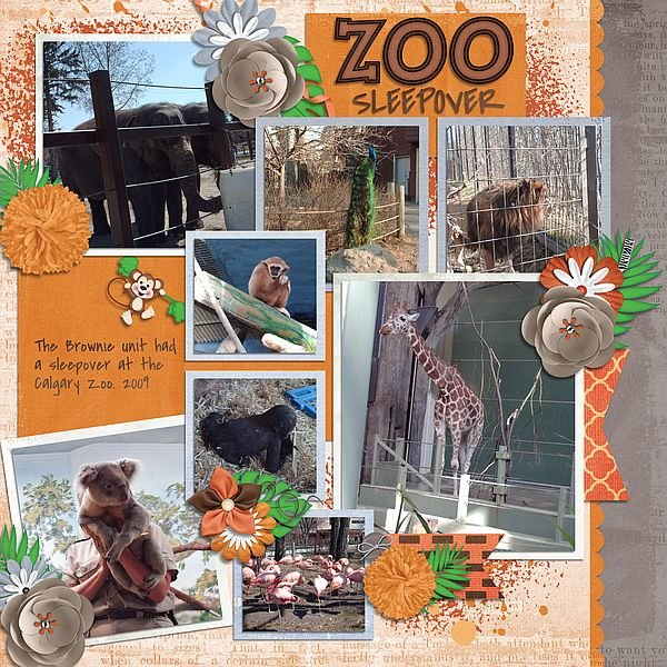 Zoo Sleepover