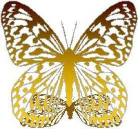 FREE!  FREE!  FREE!  GOLD BUTTERFLY! TAKE IT IF YOU WANT IT!