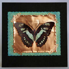 Copper Butterfly Card