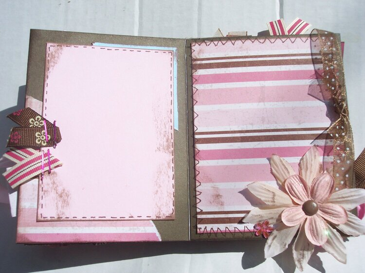 Pink and Brown Mini Album *photo 3 of 3