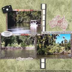 The mangrove