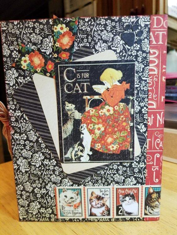 Raining Cats and Dogs DIY album