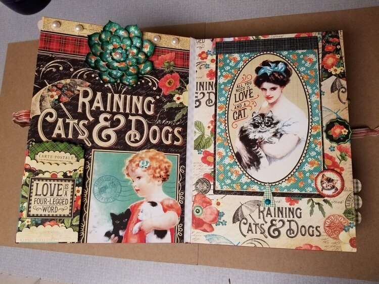 Raining Cats and Dogs album page 1 & 2