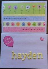 Hayden 2016