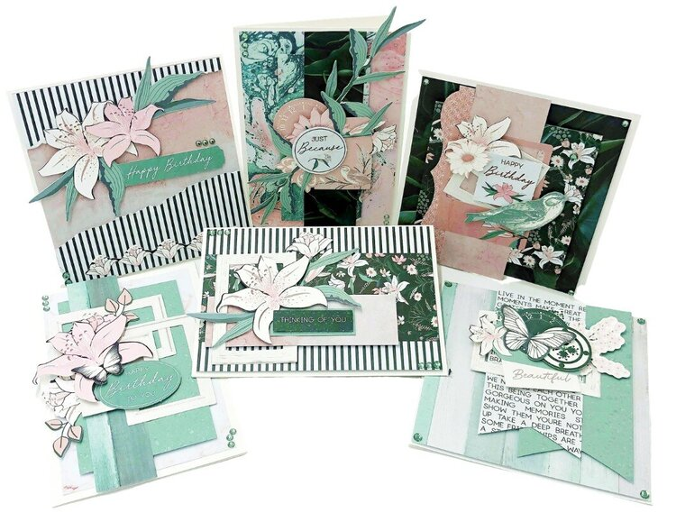 Lily & Moss Collection Cards
