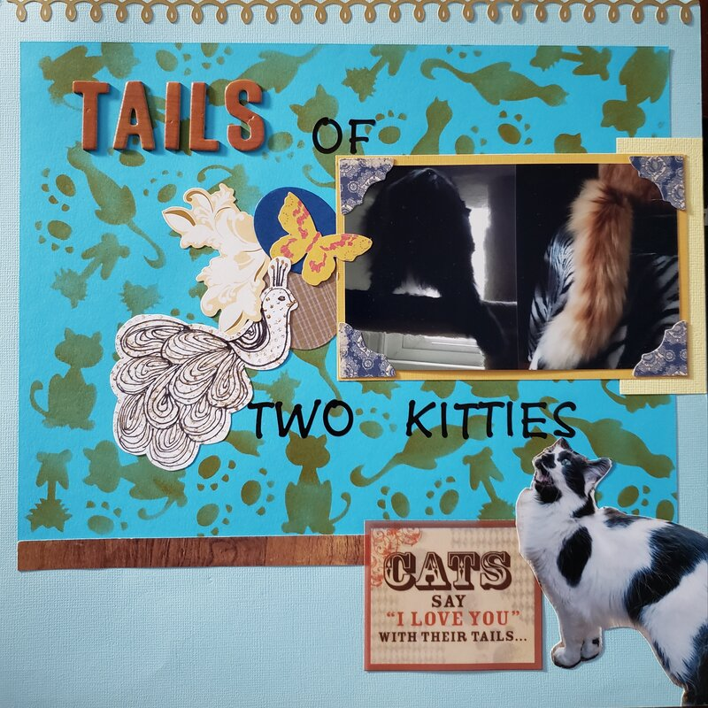 It's a Tails of Two Kitties