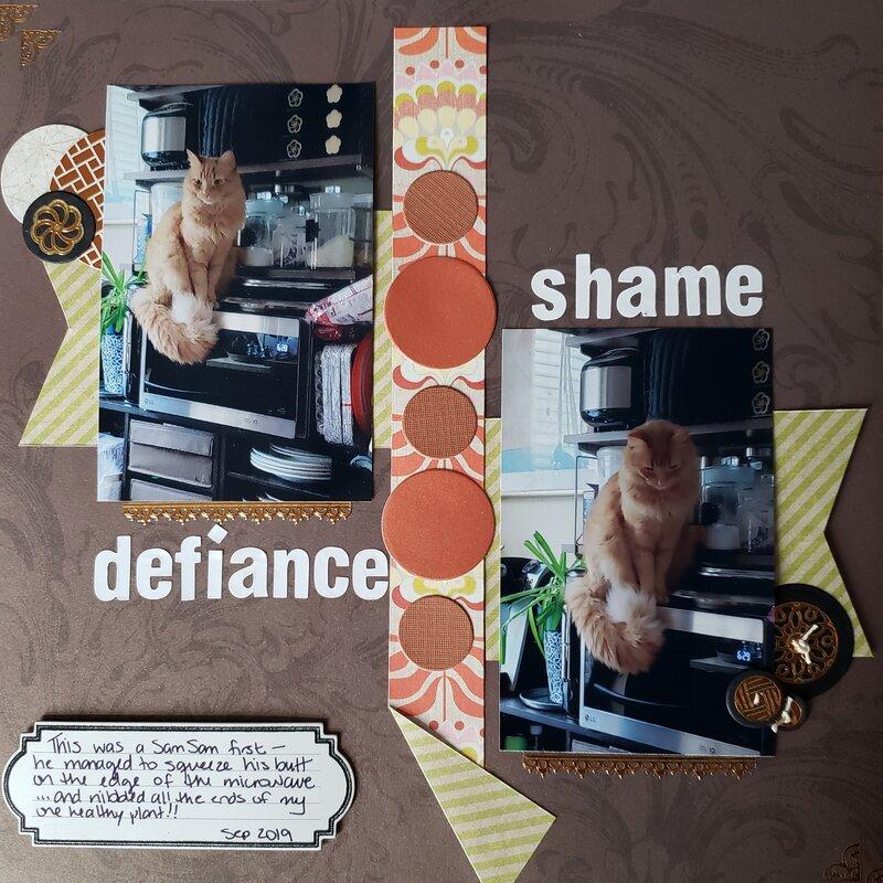 defiance  & shame