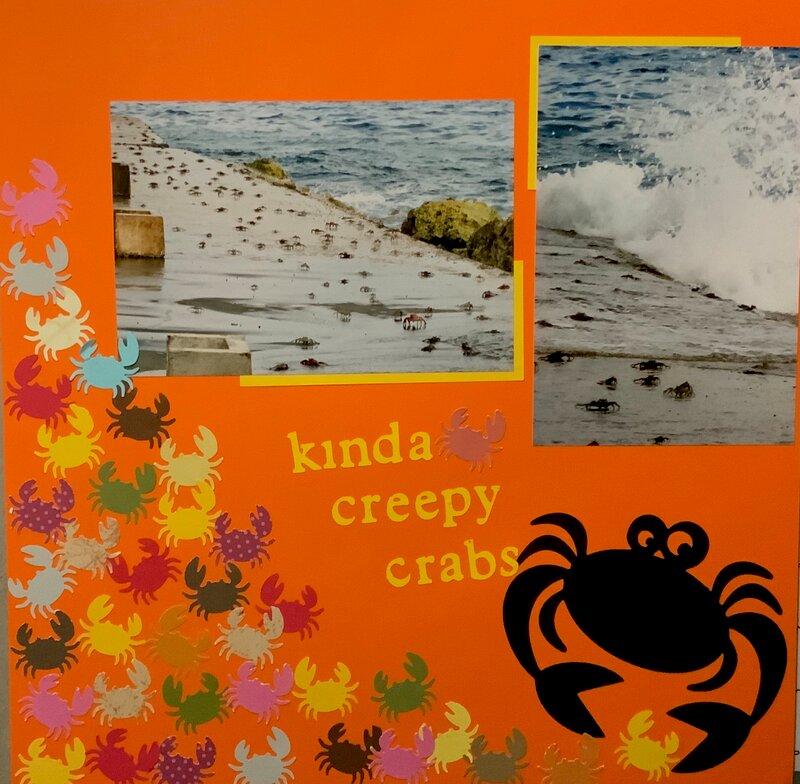 Kinda Creepy Curacao Crabs