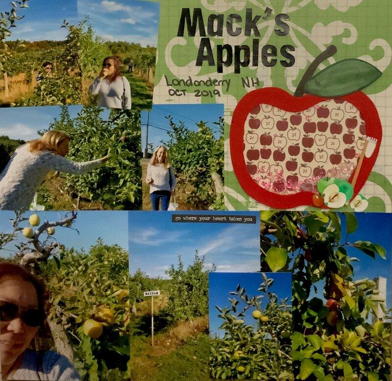 Apple Picking at Mack's Apples