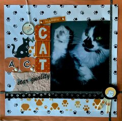 A Cat Act