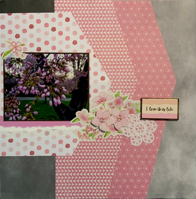 Love this Live - Cherry Blossoms 2021