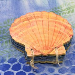 Seashell Book
