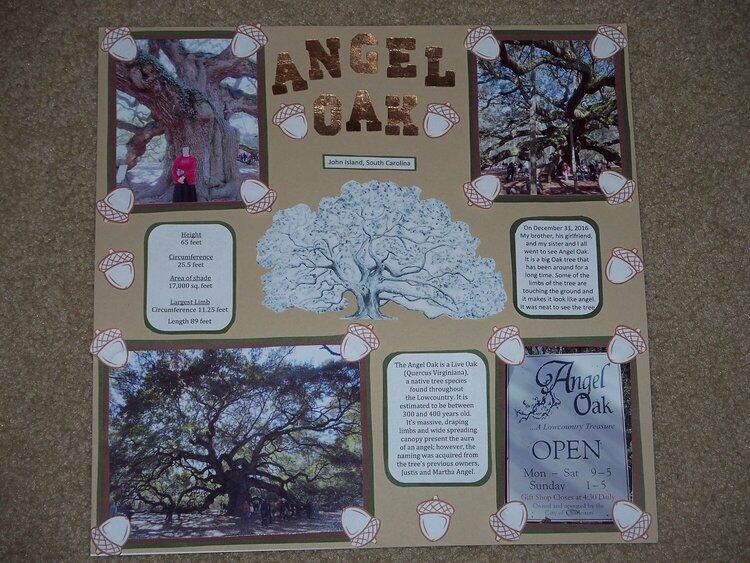 Angel Oak (tree)