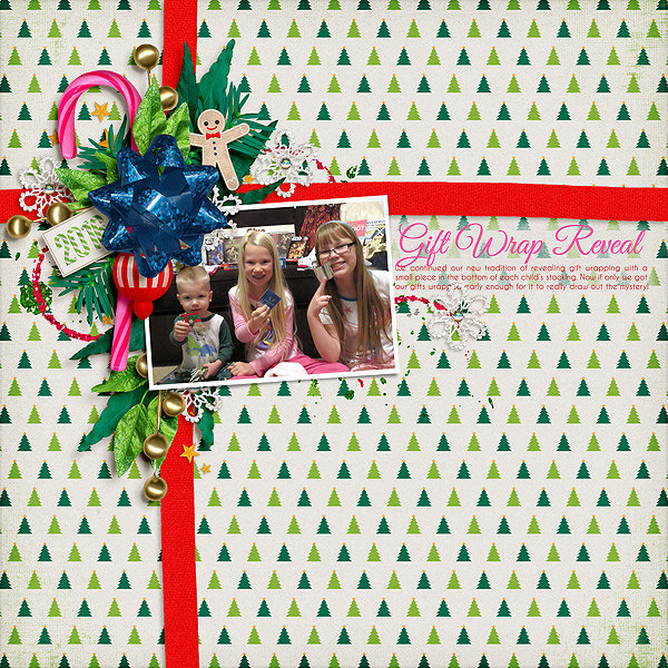 Gift Wrap Reveal