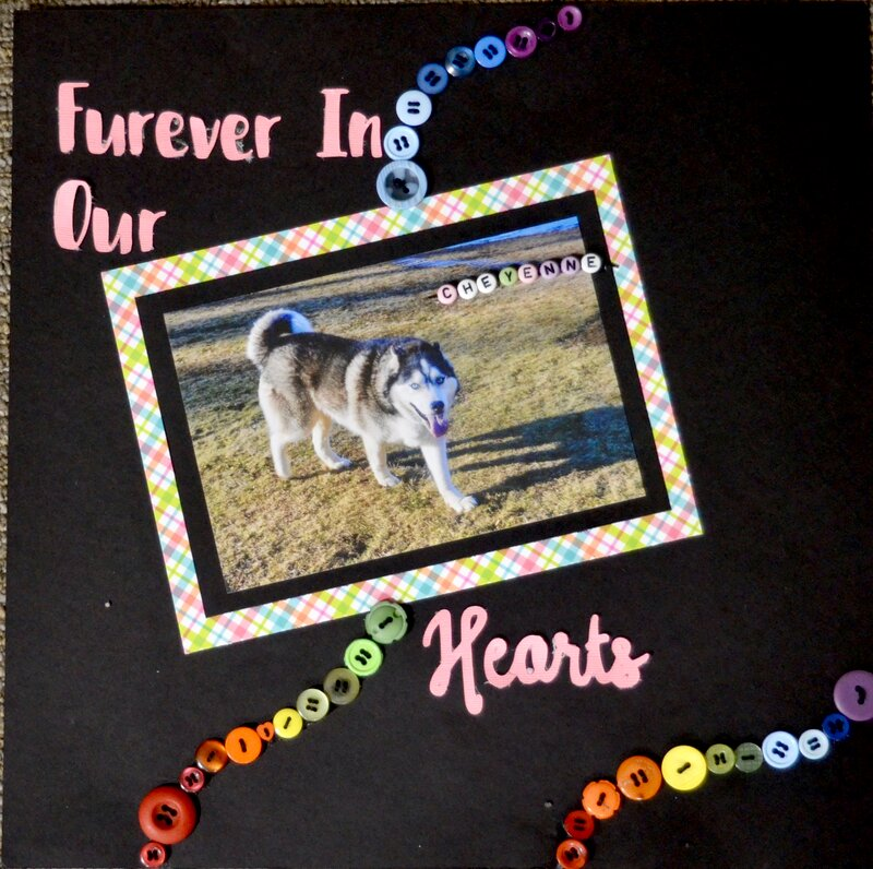 Furever in Our Hearts