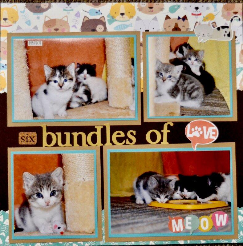 6 Bundles of Love