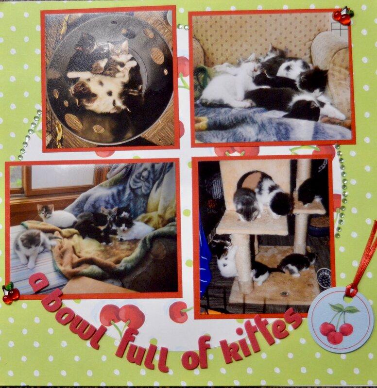 A Bowl Full of Kitties