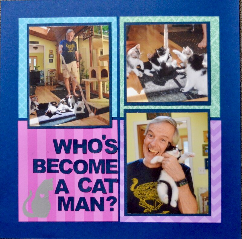 Who's Become a Cat Man?