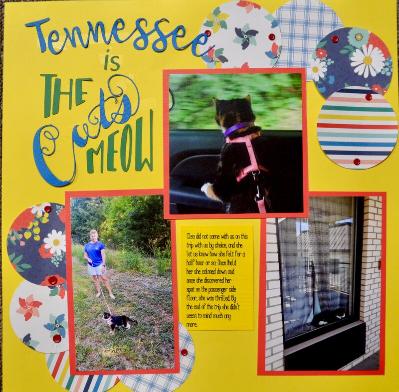 Tennessee is the Cat's Meow