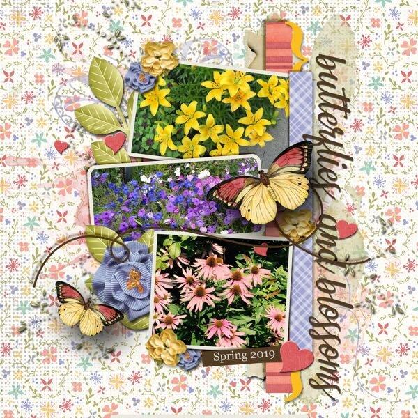 Butterflies & Blossoms