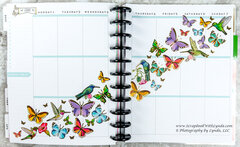 Butteryfly and Hummingbird Before the Pen Planner Spread