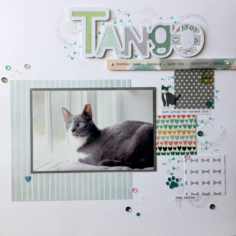 Tango cat nicknames
