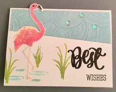 Flamingo Best Wishes