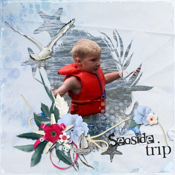 Seaside Trip