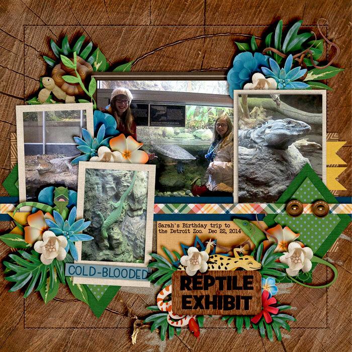 Reptile exhibit