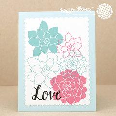 Pastel Succulents Card
