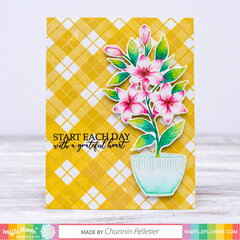 Plaid Potted Lily Card