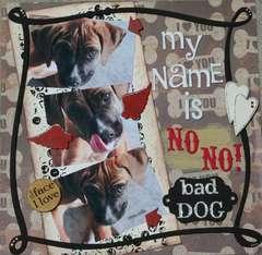 My name is NO NO! bad dog