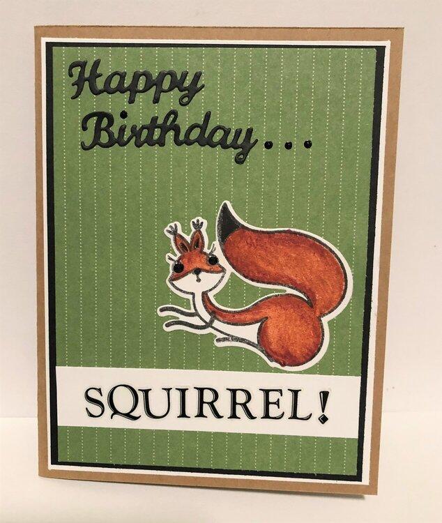 Squirrel Birthday