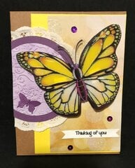 Big Butterfly Card #4
