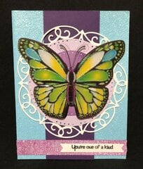 Big Butterfly Card #3