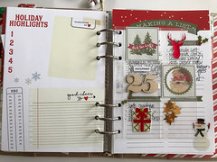 December in my Carpe Diem Planner